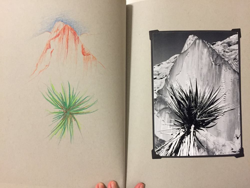 JuneU_book03